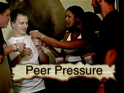 a personal opinion on the influence of peer pressure on young people Peer pressure and resilience in young people  •peer pressure is the influence exerted by a  personal level are affected.
