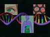 An Interactive DVD. Clearly and simply presents basic information on one of the most important concepts in modern science-the gene. New computer animations help clarify the concepts. Includes guided questions and quizzes to help teachers reinforce concepts recommended in the National Science Standards.